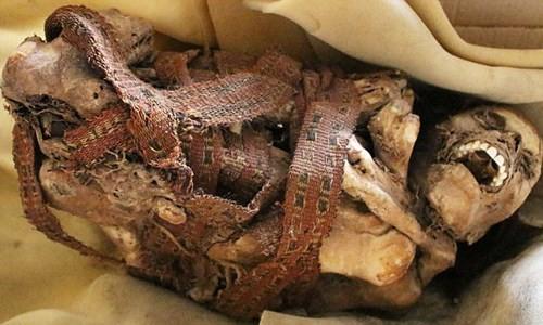 Chết ngất khi phát hiện xác ướp 900 năm mỉm cười - ảnh 1