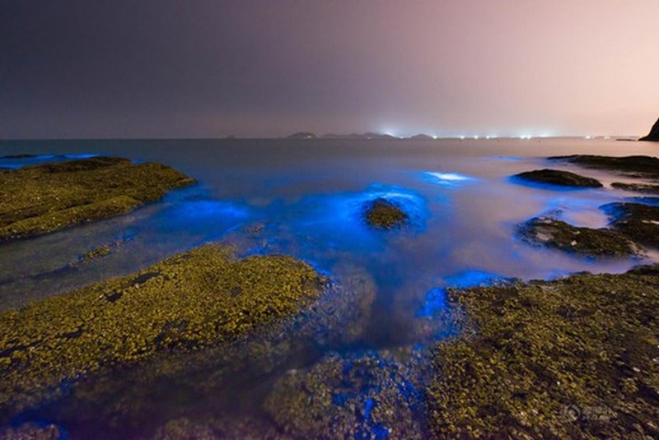 Bờ biển sáng xanh kỳ lạ ở Trung Quốc - ảnh 2