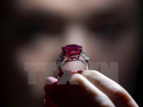 Chiêm ngưỡng viên hồng ngọc đắt nhất thế giới tại Thụy Sĩ - ảnh 2