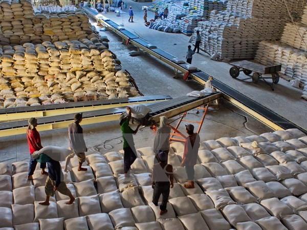 Philippines mời Việt Nam đấu thầu cung cấp 250.000 tấn gạo - ảnh 1
