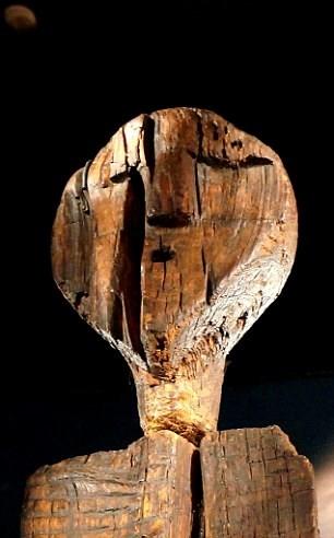 Bí ẩn tượng gỗ 11 vạn năm không mục nát - ảnh 3
