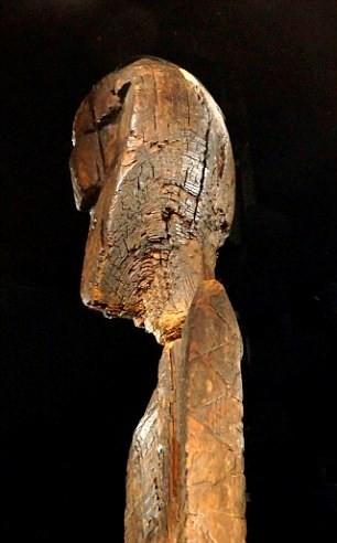 Bí ẩn tượng gỗ 11 vạn năm không mục nát - ảnh 4