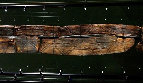 Bí ẩn tượng gỗ 11 vạn năm không mục nát - ảnh 5
