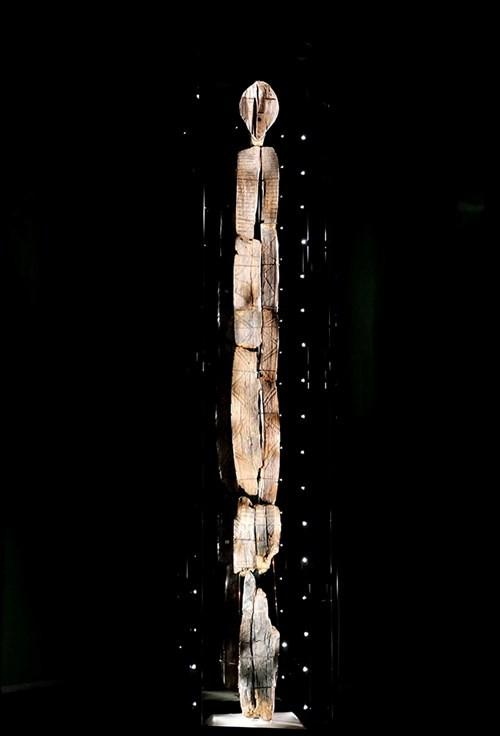 Bí ẩn tượng gỗ 11 vạn năm không mục nát - ảnh 6