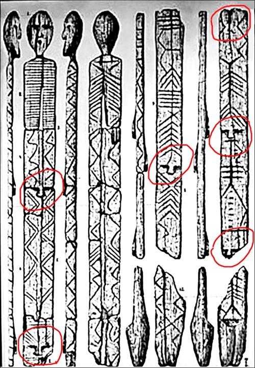 Bí ẩn tượng gỗ 11 vạn năm không mục nát - ảnh 7