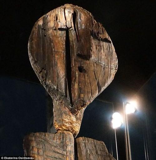 Bí ẩn tượng gỗ 11 vạn năm không mục nát - ảnh 1