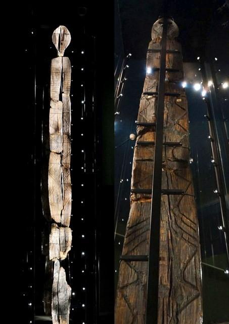 Bí ẩn tượng gỗ 11 vạn năm không mục nát - ảnh 2
