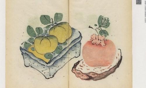 Cổ thư in màu vẹn nguyên kỳ lạ suốt 300 năm - ảnh 5