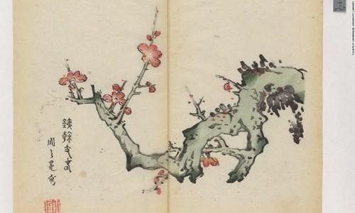 Cổ thư in màu vẹn nguyên kỳ lạ suốt 300 năm - ảnh 7