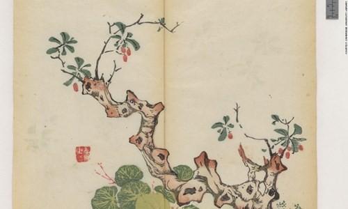 Cổ thư in màu vẹn nguyên kỳ lạ suốt 300 năm - ảnh 9