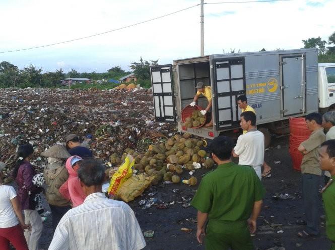 PC49 Công an tỉnh Đắk Lắk tổ chức tiêu hủy sầu riêng nhúng hóa chất của cơ sở Rồng Hoa Thái - một trong ba cơ sở bị xử phạt - Ảnh: Duy Hòa
