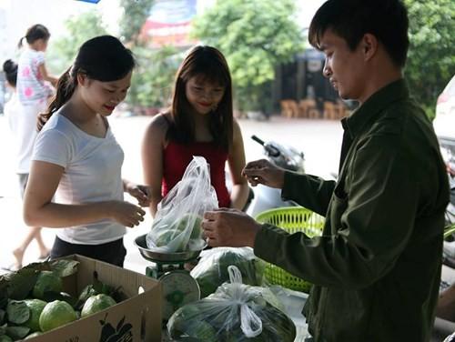 Lệ Rơi bán ổi ở Hà Nội sau những ngày rơi lệ ở showbiz - ảnh 5