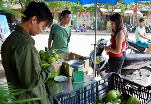 Lệ Rơi bán ổi ở Hà Nội sau những ngày rơi lệ ở showbiz - ảnh 4