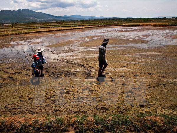 Việt Nam đối mặt một mùa đông ấm và El Nino kéo dài kỷ lục - ảnh 1
