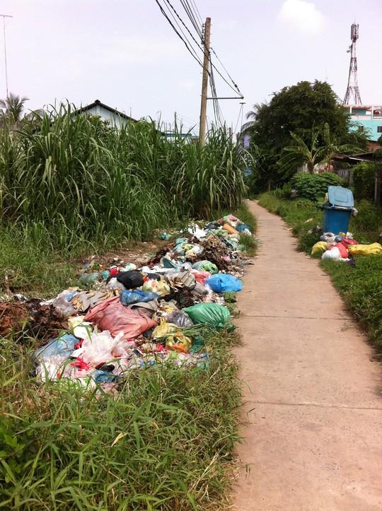 Chỉ vì nhiều người tiếc 12.000 đồng tiền rác mỗi tháng mà con lộ này đã biến thành bãi rác, gây ô nhiễm môi trường