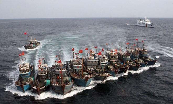Hàn Quốc bắt giữ 2 tàu Trung Quốc đánh bắt cá bất hợp pháp - ảnh 1