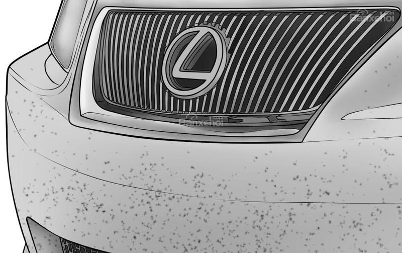 Mẹo loại bỏ côn trùng bám trên xe ô tô