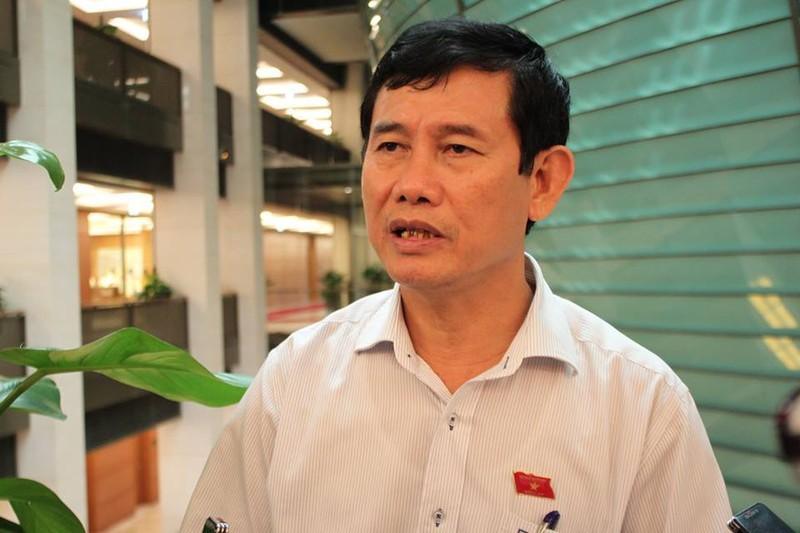 Phó trưởng Đoàn ĐBQH tỉnh Quảng Bình: Không thể 'trăm dâu đổ đầu ông Cự'! - ảnh 1