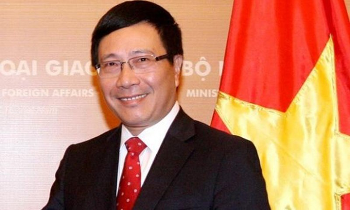 Đề nghị thêm Bộ trưởng Ngoại giao thay vì Phó Thủ tướng kiêm nhiệm - ảnh 1