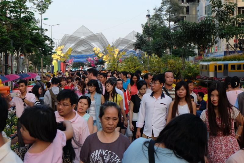 Đường hoa tết sẽ được tổ chức ở phố đi bộ Nguyễn Huệ - ảnh 3