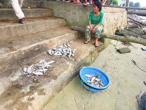 Chủ tịch Thừa Thiên-Huế trực tiếp kiểm tra hiện trường cá chết - ảnh 1