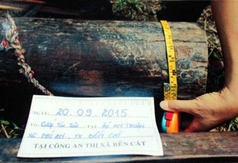 Bốn tên cướp trói cụ ông 90 tuổi để cướp gỗ tủ thờ  - ảnh 2