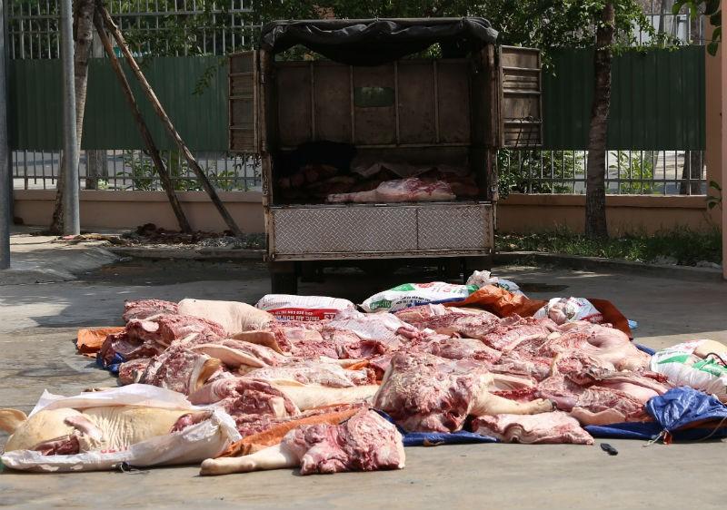 Bắt hơn 1 tấn thịt heo thối trên đường ra chợ - ảnh 1