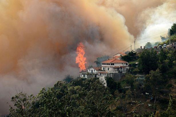 Cristiano Ronaldo dang tay cứu trợ đám cháy quê nhà  - ảnh 4