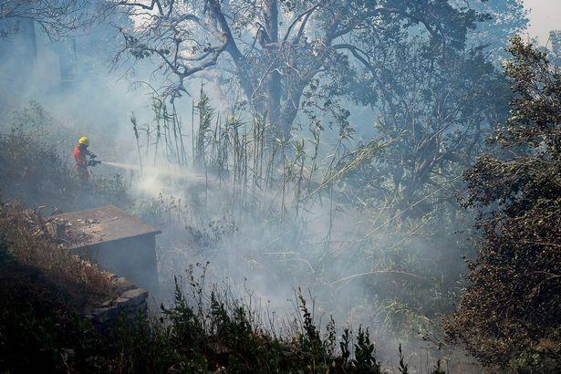 Cristiano Ronaldo dang tay cứu trợ đám cháy quê nhà  - ảnh 2