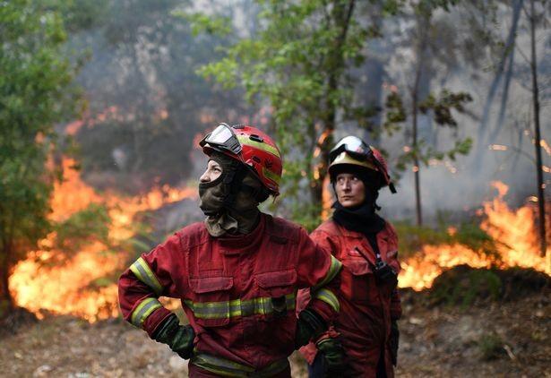 Cristiano Ronaldo dang tay cứu trợ đám cháy quê nhà  - ảnh 8