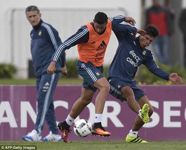 'Cầu thủ' 4 chân thay thế Messi ở đội tuyển Argentina - ảnh 4